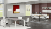 Single Glazed Frameless Glass Office Partitions